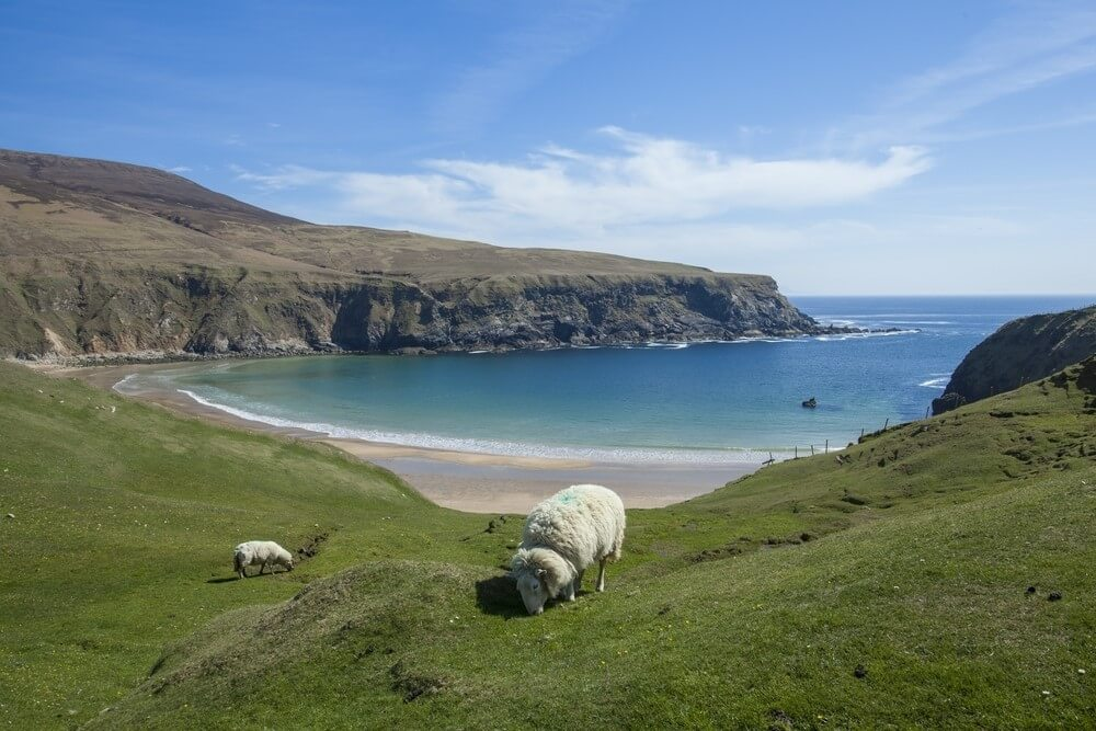 This Coastal Walking Trail Is The Perfect Spot To Experience The Wild Atlantic Way